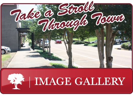 Town of Meadville Image Gallery